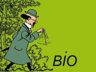 bio-tournesol
