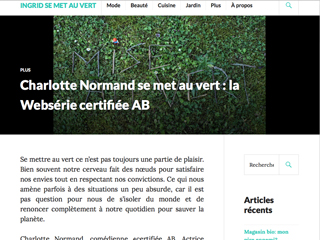 blog-article-websérie-petit