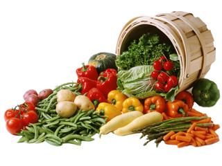 legumes-tonneau