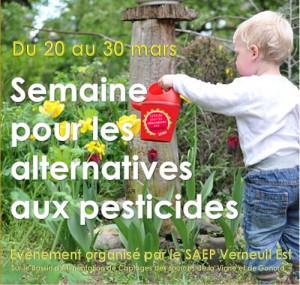 SAP- Verneuil