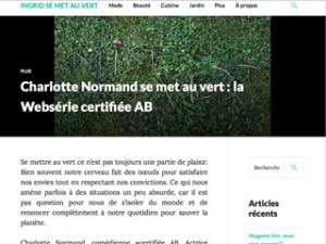 blog-article-websérie-petit